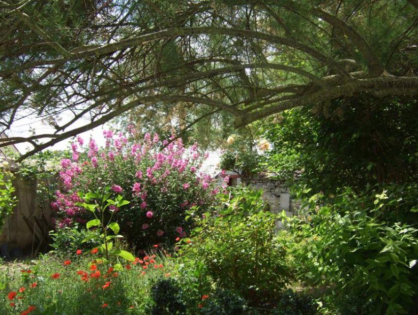 Jardin - maison villageoise et  de caractère - en Anjou (Maine et Loire)